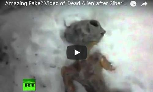 Fake dead alien